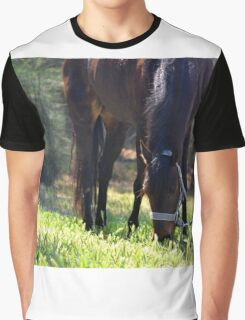 Pony in pasture Graphic T-Shirt