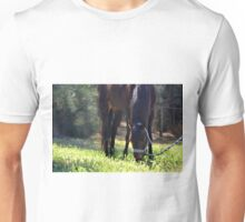 Pony in pasture Unisex T-Shirt
