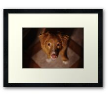 Who? Me? Framed Print