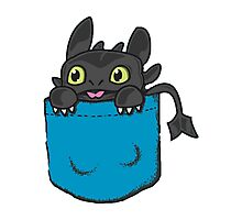Toothless Frocket Photographic Print