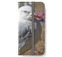 Seagull in Wollongong (1) iPhone Wallet/Case/Skin
