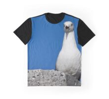 Seagull in Wollongong (2) Graphic T-Shirt