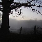 A Smoky Mountain Fog by Jean Gregory  Evans