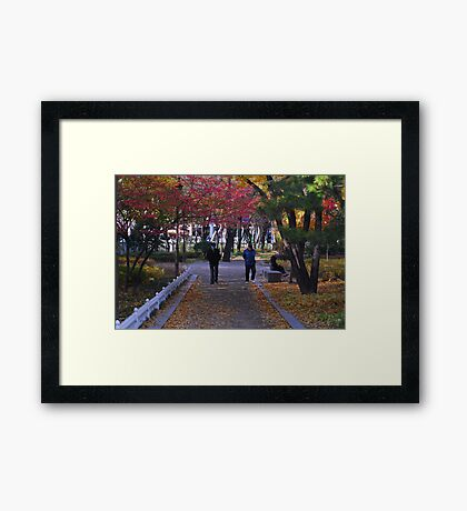 A Walk in the Park in Seoul Framed Print