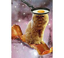 bacon egg cat Photographic Print