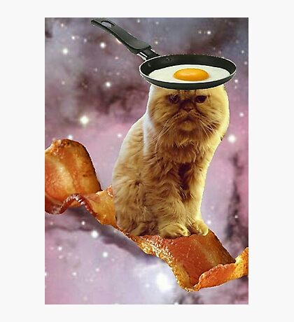 bacon egg cat Photographic Print