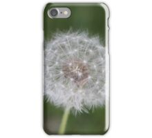 Untouched Dandelion iPhone Case/Skin