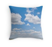 Winter Wheat Farm in the Palouse Throw Pillow