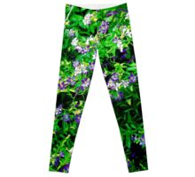 Blagreen Leggings