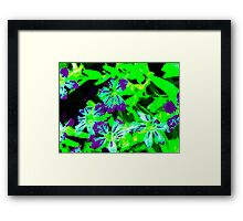 VFLOSS Framed Print