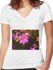 Pub Flower Women's Fitted V-Neck T-Shirt