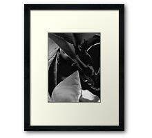 Dice Leaf Framed Print