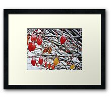 Michigan Winter Framed Print