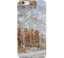 Vintage famous art - Childe Hassam - The Hawk S Nest iPhone Case/Skin