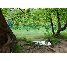 Plitvice Lakes National Park 02 Photographic Print