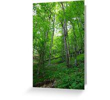 Plitvice Lakes National Park 04 Greeting Card