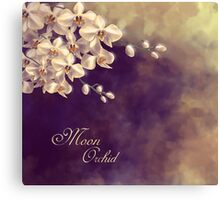 Moon Orchid Canvas Print