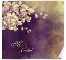 Moon Orchid Poster