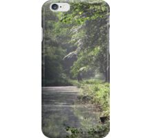 Morninglight in the forest iPhone Case/Skin