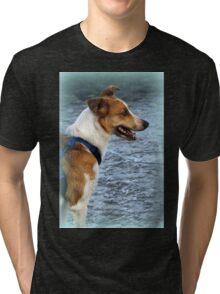 dog at lake Tri-blend T-Shirt