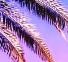 Purple Palm Trees Sticker