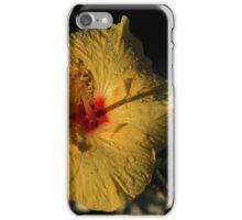 Yellow Hibiscus Flower iPhone Case/Skin