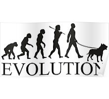EVOLUTION pitbull Poster