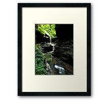 Watkins Glen Gorge III Framed Print