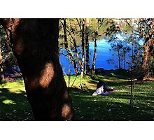 Paradise in The Shire, Sydney.  Photographic Print