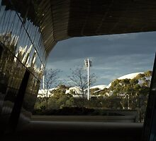 Adelaide Oval by Ben Loveday