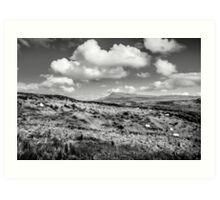 Donegal Scene Art Print
