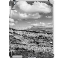 Donegal Scene iPad Case/Skin