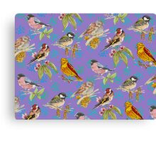 British Birds Canvas Print