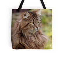 Maine Coon Cat Artwork Tote Bag
