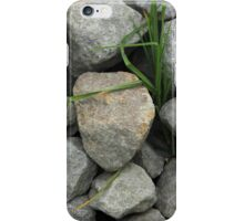 Gray Rocks and Green Grass iPhone Case/Skin