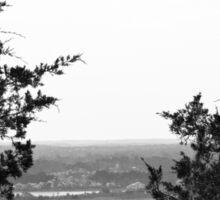 Through the Trees at Foley Mountain Sticker