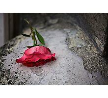 sl-week-2-rouge Photographic Print