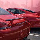 Porsche Pair by barkeypf