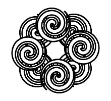 Spiral Pie Photographic Print