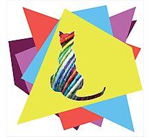 Yarn cat Photographic Print