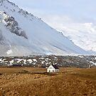 ICELAND XX by Debbie Ashe