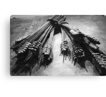 Bows & Arrows Canvas Print