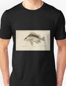 Natural History Fish Histoire naturelle des poissons Georges V1 V2 Cuvier 1849 202 T-Shirt