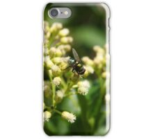 Green and Gold Striped Fly iPhone Case/Skin
