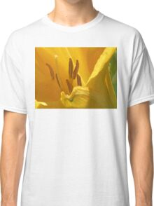 On Limpid Stamen Shoe-trees Classic T-Shirt