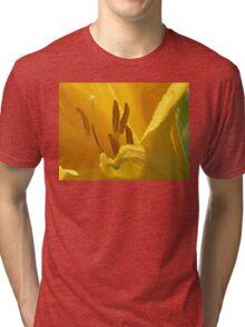On Limpid Stamen Shoe-trees Tri-blend T-Shirt