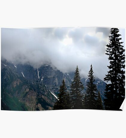 Can't See the Mountain for the Trees Poster
