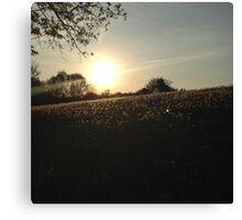 Sunset Over Dandelion Hill 3 Canvas Print