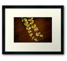 Green Tendrils Framed Print