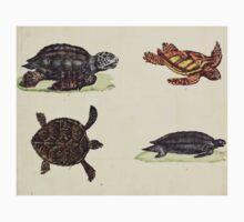 Naturgeschichte in Bildern mit erläuterndem Text E Strack 1820 Lief 3 Reptiles 001 Kids Tee